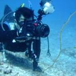 宮古島ダイビング通信:お魚がいっぱい!