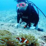 宮古島ダイビング通信:嵐の前の静けさ