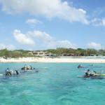 宮古島ダイビング通信:ビーチでフィッシュウオチング♪
