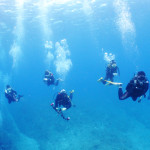 宮古島ダイビング通信:Blue water