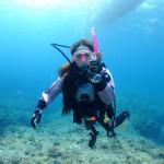 宮古島ダイビング通信:水温が低くても見所いっぱい!