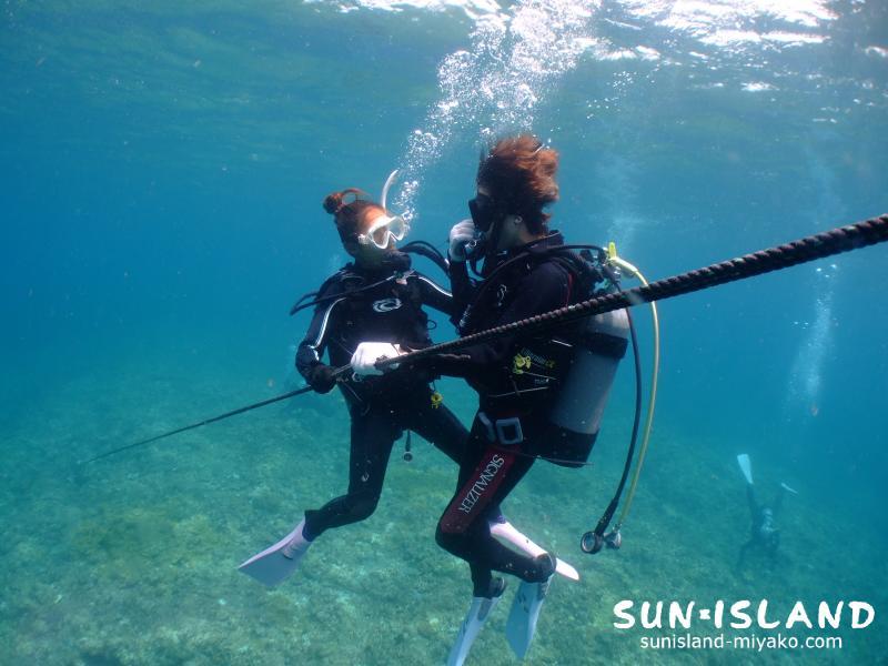 ロールを捕まり潜降するダイバー