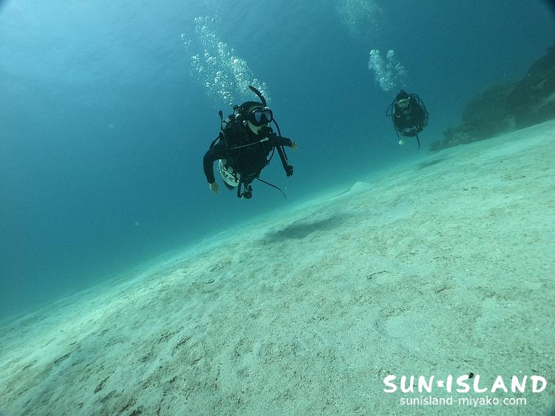 透明感あふれる宮古島ダイビング