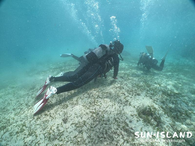 Yさん達のビーチ体験ダイビング