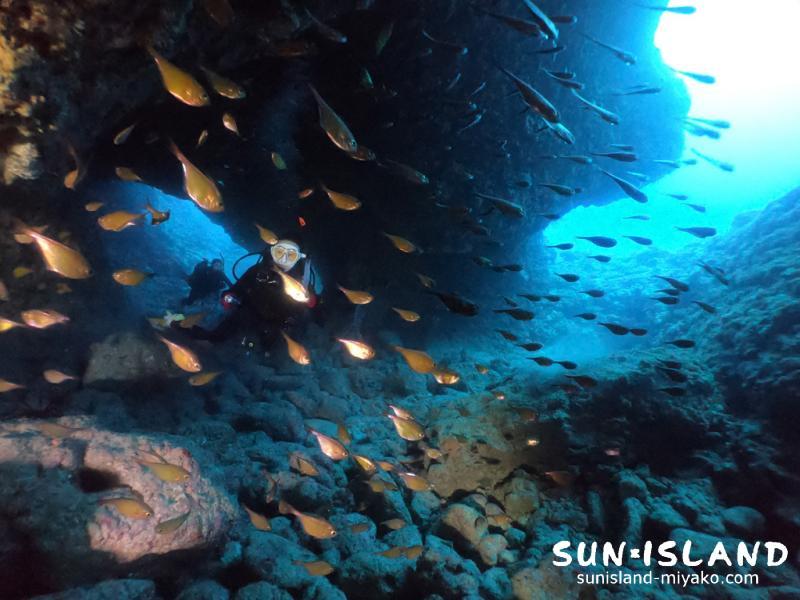 下地島ダイビングスポット『魔女の部屋』