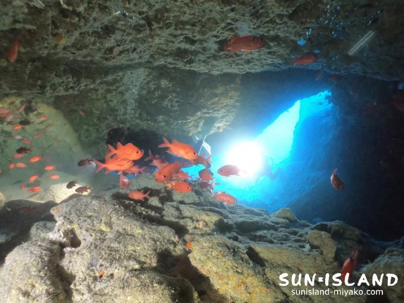 伊良部島ダイビングスポット「ワープホール」