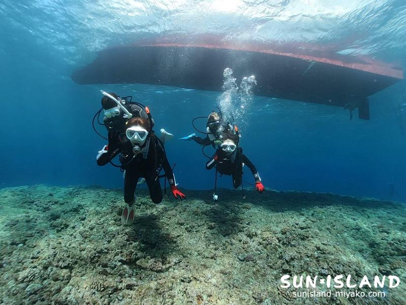ボート体験ダイビング