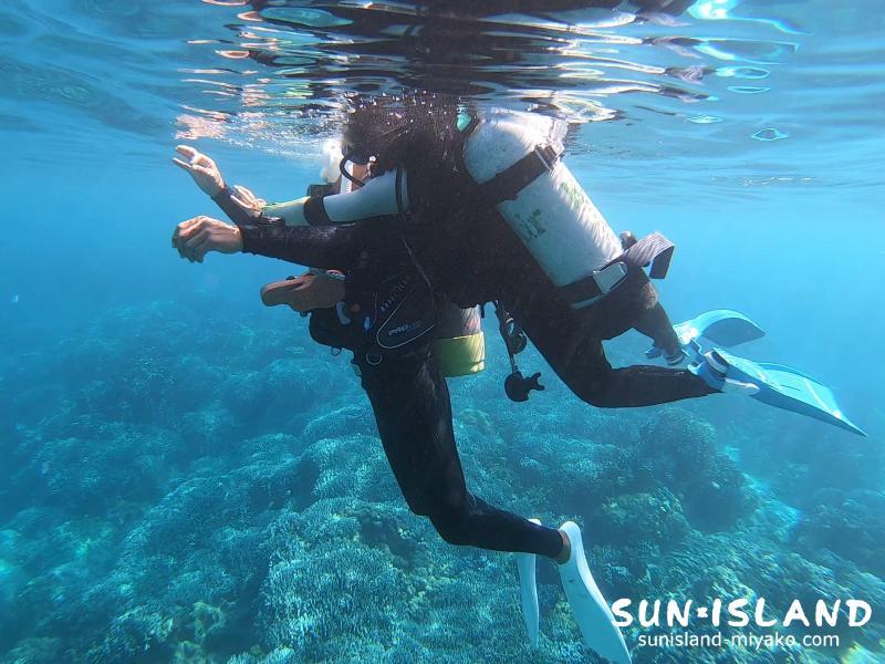 スタッフトレーニング 体験ダイビング