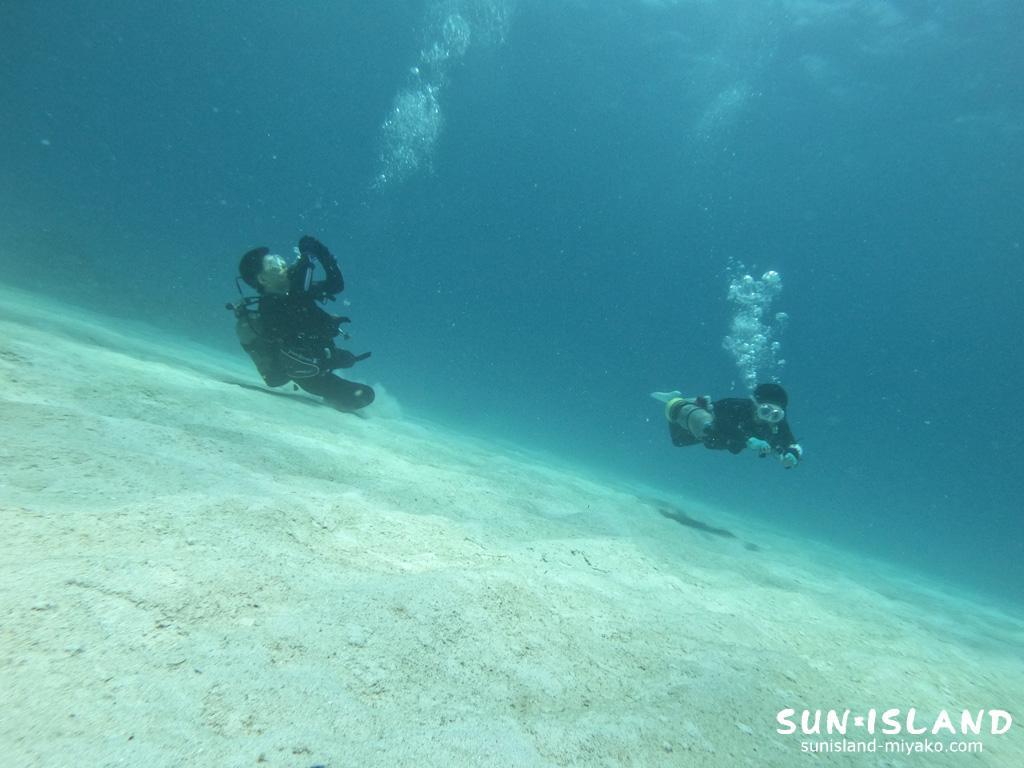 砂地でのダイビング